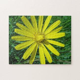 Puzle flor amarilla de maya rompecabeza con fotos