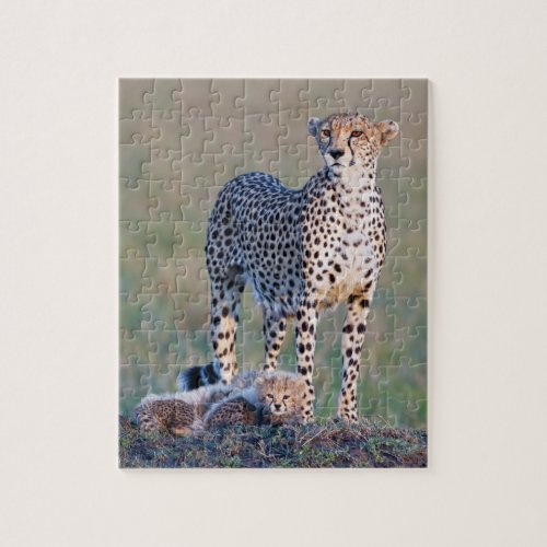 Puzzle 10x8 110 pieces _ Cheetah and cubs