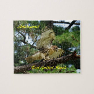 Puzzle, adolescent red tailed hawk jigsaw puzzle