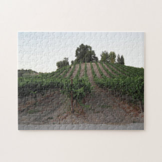 Puzzle: Aron Hill Vineyard in Late August