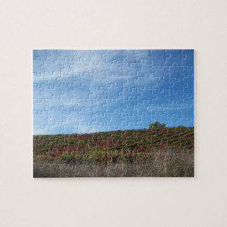 Puzzle: Autumn in Wine Country, Paso Robles, CA