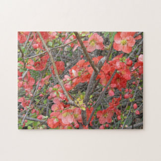 Puzzle--Brick Red Monkey Flowers Jigsaw Puzzles