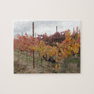 Puzzle: California Vineyard before Harvest in Nov