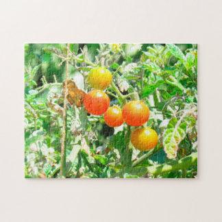 Puzzle - Cherry Tomatoes