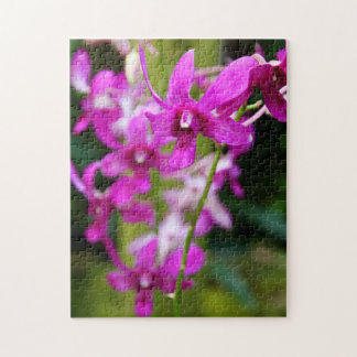 Puzzle - Cooktown Orchid
