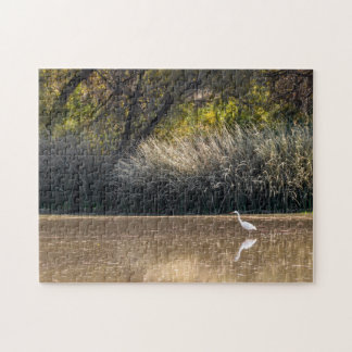 Puzzle: Egret Hunting In Pond 2