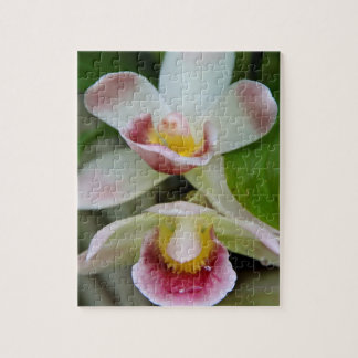 Puzzle - Fan Shaped Orchid
