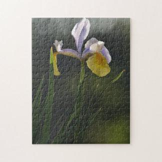 Puzzle: Garden Orchid