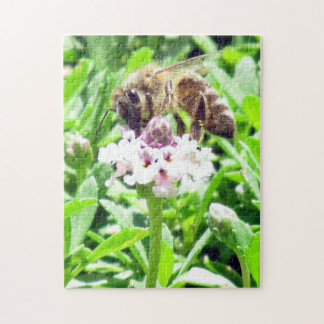 Puzzle - Honey Bee