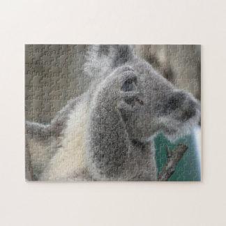 Puzzle Koala Wildlife Animals Jigsaw Puzzles