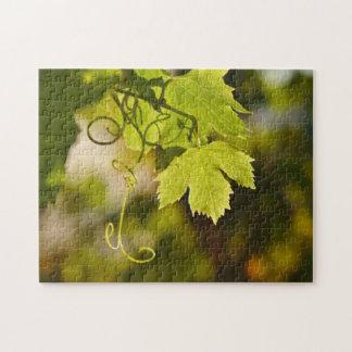 Puzzle: Mediterranean Grape Vine Jigsaw Puzzle