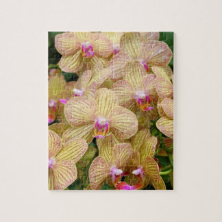 Puzzle - Moth Orchid