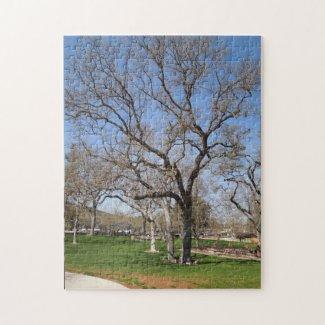 Puzzle: Oak Trees at Atascadero Lake Park, CA Jigsaw Puzzle