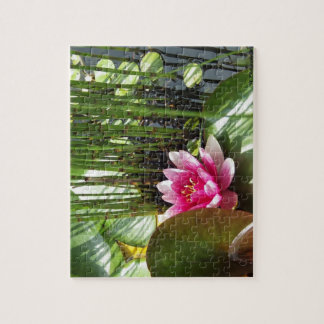 Puzzle reason water lily with limps 20.32 cm X
