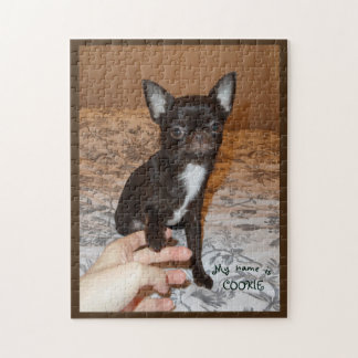 puzzle white maroon chihuahua sitted portrait name