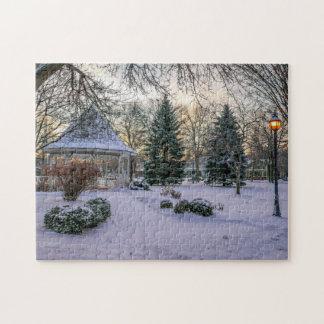 Puzzle Winona MN Snowy Windom Park