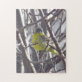 Puzzle - Yellow Finch in Branches