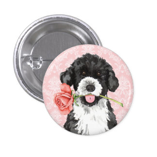 PWD subió tarjeta del día de San Valentín Pins