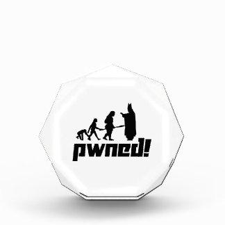 Pwned! Acrylic Award