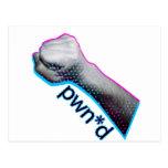 Pwned Gamer Tshirt Post Cards