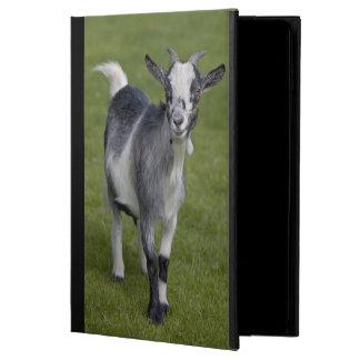 Pygmy Goat iPad Air Case (all versions)