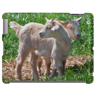 Pygmy Goat Kids iPad Case