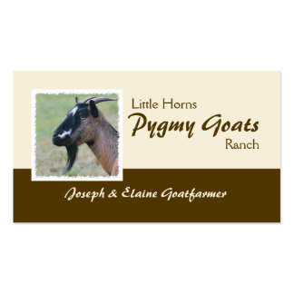 Pygmy goats business card