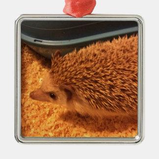 Pygmy  Hedgehog Metal Ornament
