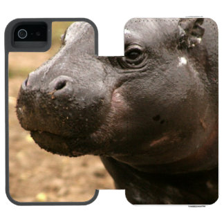 pygmy-hippo-1 incipio watson™ iPhone 5 wallet case