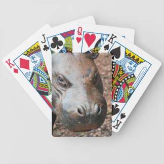 Pygmy hippo bicycle playing cards