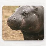 Pygmy Hippo Mouse Pad