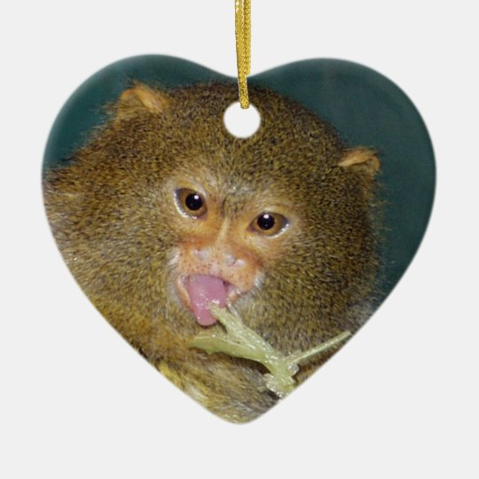 Pygmy Marmoset Christmas Ornament