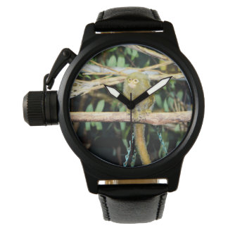 Pygmy_Marmoset_Mens_Crown_Protector_Leather_Watch. Reloj