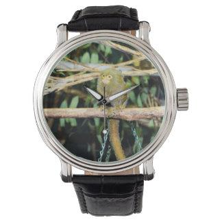 Pygmy_Marmoset, - Mens_Leather_Vintage_Watch. Relojes De Mano