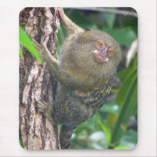 Pygmy Marmoset Mouse Pad