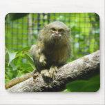 Pygmy Marmoset Mousepad