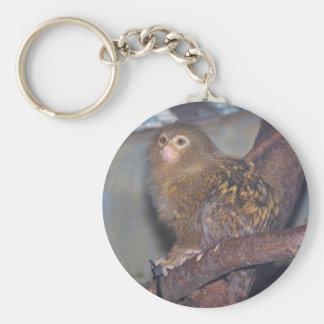 Pygmy Marmoset Portrait Keychain