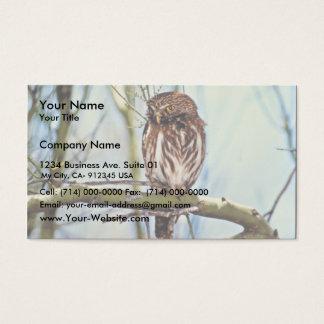 Pygmy Owl Business Card