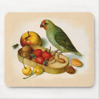 Pygmy Parrot With Fruit and Nuts Mouse Pad