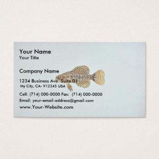 Pygmy sunfish business card