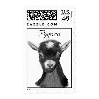 Pygora Goat Postage