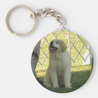 Pyr Puppy Basic Round Button Keychain