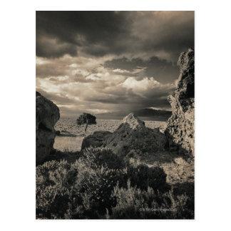 Pyramid Lake, Nevada 2 Postcard