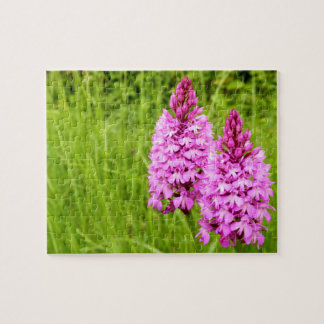 Pyramidal Orchid Photo Puzzle