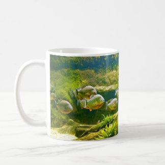 Pyranha Pygocentrus Piraya Fish Mugs