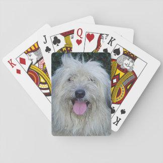 pyrenean shepherd.png playing cards