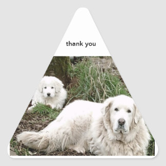 Pyrenees Dog & Puppy thank you stickers