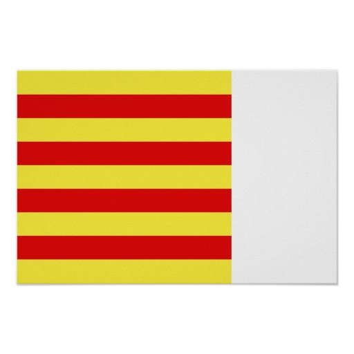 Pyrenees-Orientales, France flag Posters