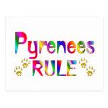 Pyrenees Rule Postcard