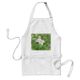 Pyrethrum Daisies -  Tanacetum coccineum Adult Apron